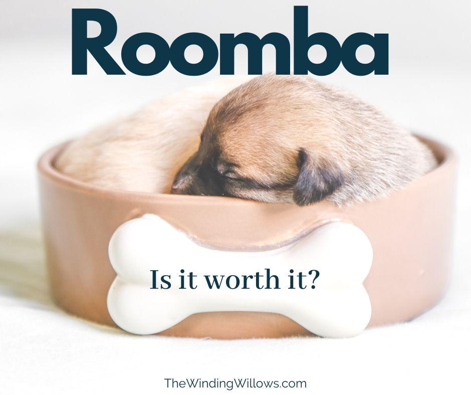 Roomba Facebook