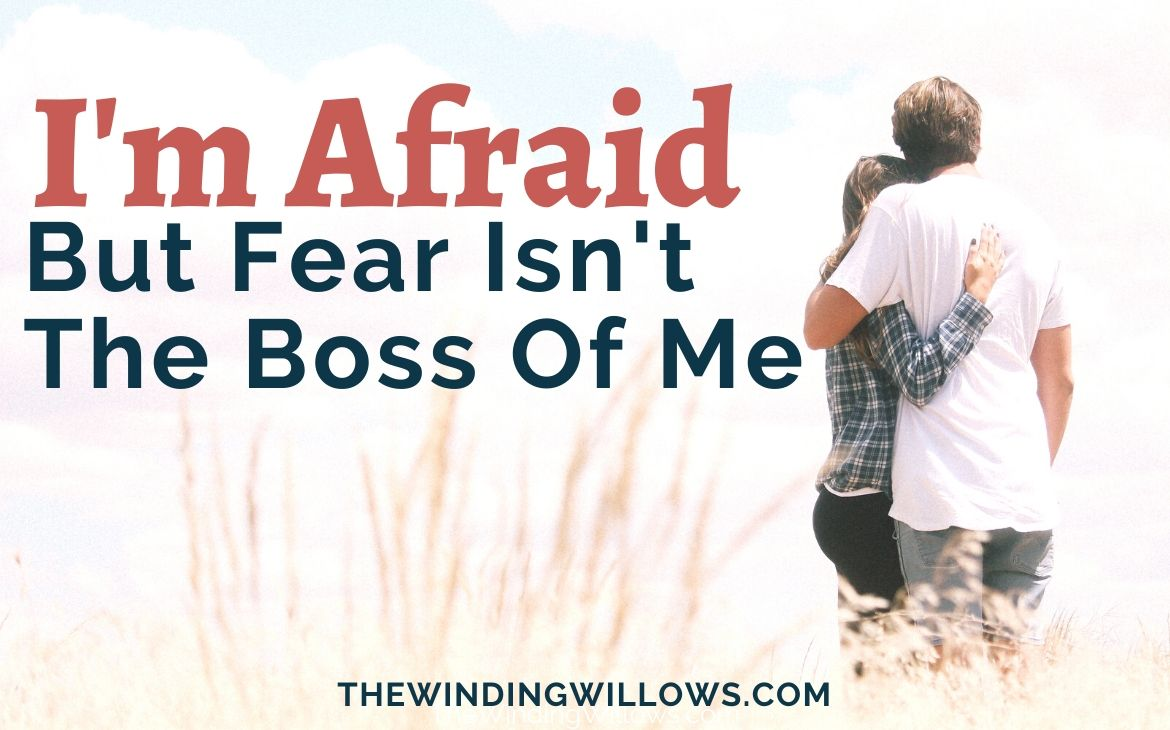 Fear isn't the boss cover